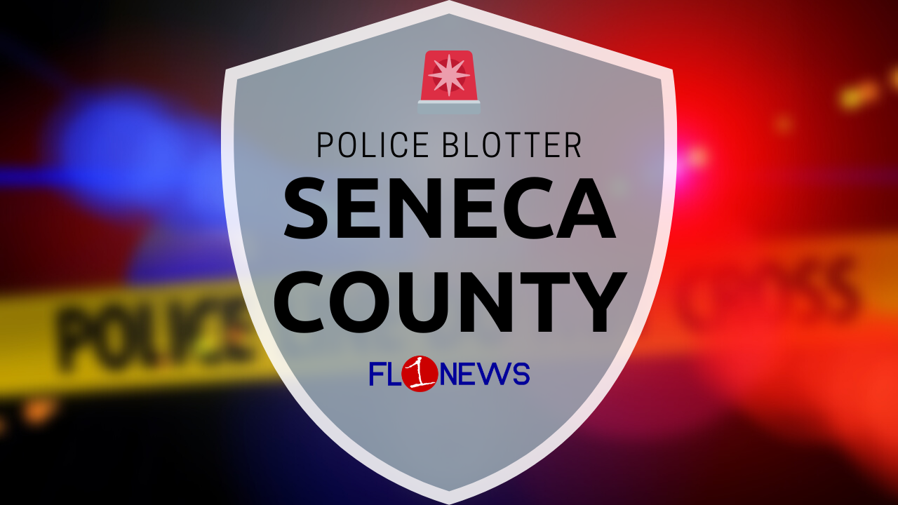 Police: Victim required stitches after getting punched by Seneca Falls man