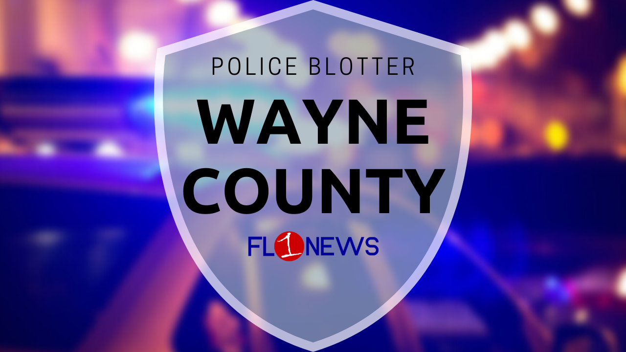 Deputies: Wayne County man throws plate at young child during dispute over cigarettes