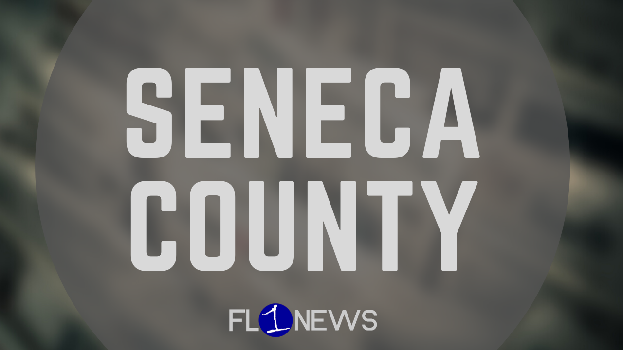 Seneca County seeks proposals for 58-acre parcel in Lodi