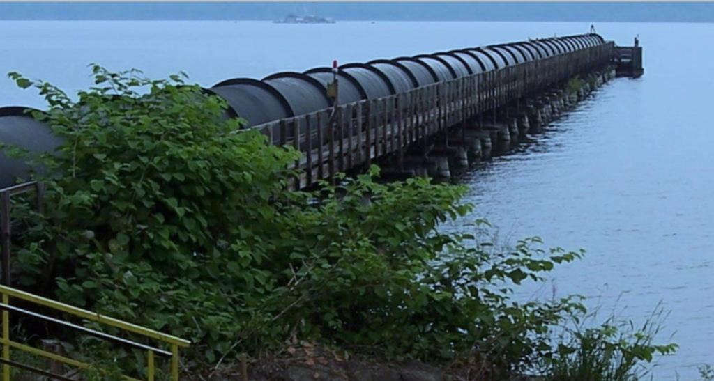 Fish aren't biting on Seneca Lake: Will Greenidge's bitcoin mining expansion will make it worse?